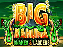 Автомат Big Kahuna Snakes And Ladders в мобайл-казино